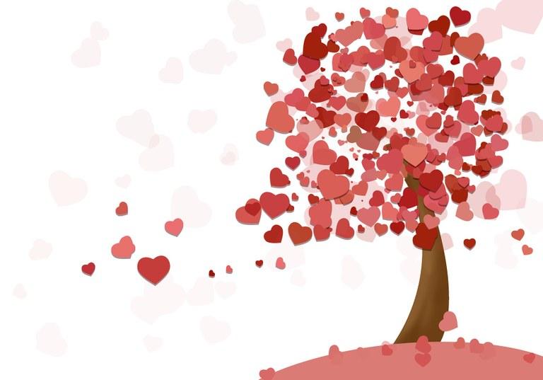 heart-1998000_1920.jpg